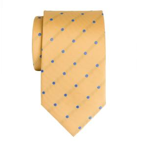 Sky on Gold Large Spot Tie