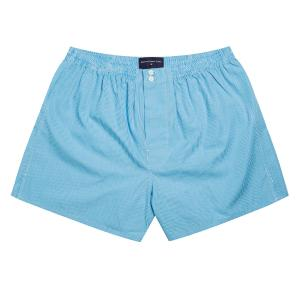 Aqua Gingham Check Poplin Boxer Shorts